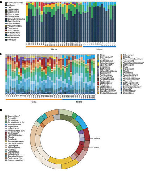 Gut microbiome of the Hadza hunter-gatherers : Nature Communications : Nature Publishing Group | Bioinformatics Training | Scoop.it