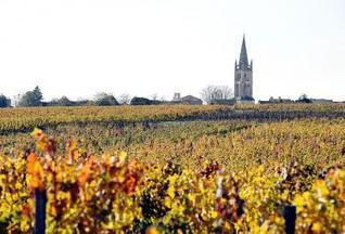 French vineyards turn 'green' with genetics, robots - Taipei Times | Wine Economy | Scoop.it