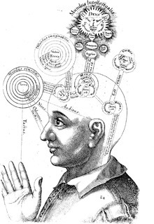 Consciousness - Wikipedia | Consciousness | Scoop.it