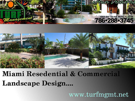 Professionals In Miami Landscape Design By Turf Management | Sports Field Management | Scoop.it