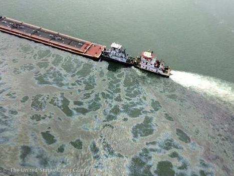 This is the impact of our daily life on the planet - Greenpeace Australia Pacific | Messenger for mother Earth | Scoop.it