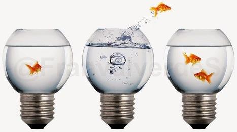 Entre el blanco y el negro: Cambios de compañía eléctrica ¿dónde está la liberalización del sector? | Infraestructura Sostenible | Scoop.it