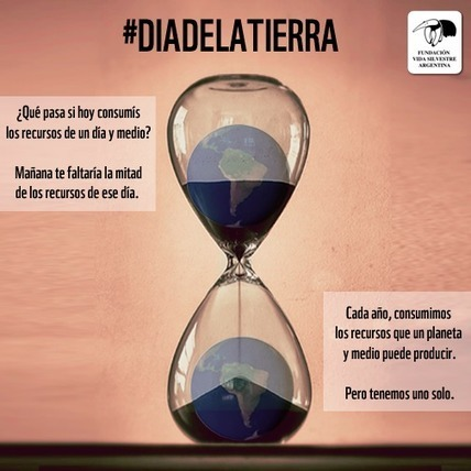 Fundación Vida Silvestre | Sado Digital | Scoop.it