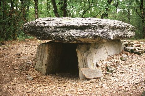 Dolmen nord du Bois des Margues - Passion Mégalithes   Mégalithismes   Scoop.it