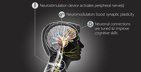 DARPA's 'Targeted Neuroplasticity Training' program aims to accelerate learning 'beyond normal levels' | KurzweilAI | Creativity & Culture | Scoop.it