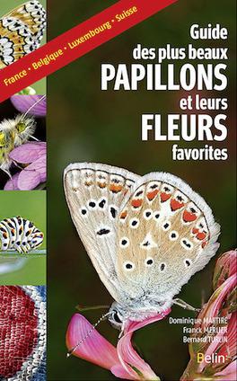 Un guide pour connaître les papillons et leurs habitudes   Variétés entomologiques   Scoop.it
