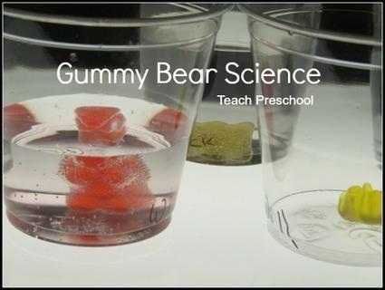 Gummy bear science | Teach Preschool | Scoop.it
