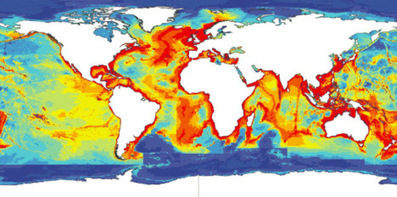 Global warming: No more fish and chips? | GarryRogers Biosphere News | Scoop.it