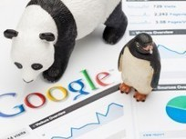 Real Business - How Google is making SEO easier for small business   Internet Marketing, SEO   Scoop.it