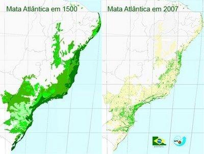 Mata Atlantica | Biologia diario | Scoop.it