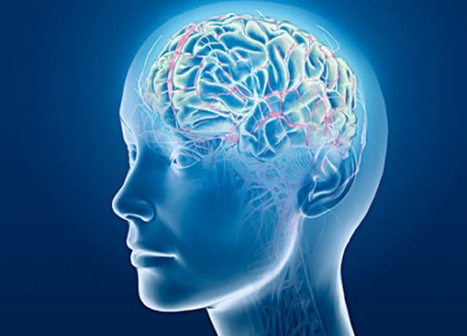 Personalization in Marketing Is The New Neuroscience | Curation Revolution | Scoop.it