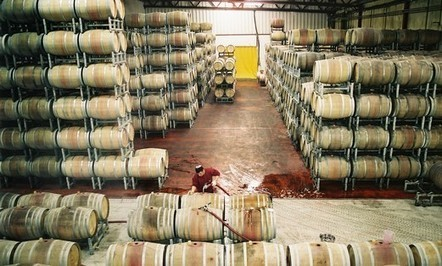 Real Israel: Uncorking wine's secrets | Vitabella Wine Daily Gossip | Scoop.it