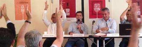 Bernard Farges retrouve la présidence des AOC Bordeaux. | Verres de Contact | Scoop.it