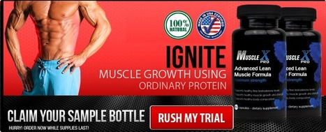 Muscle X Pro Review – Claim Your Sample Online Now!   An Solution to Build the Best Body   Scoop.it