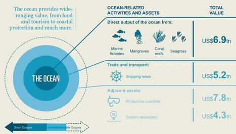 US$24 Trillion 'Asset' Value of World's Oceans may be a Gross Underestimation | Peer2Politics | Scoop.it