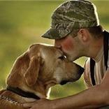 Pets for Vets | Pedegru | Animals Make Life Better | Scoop.it