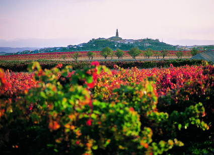 Susan Spicer's Spain: The Basque Country and Rioja | Food, wine and travel | Scoop.it