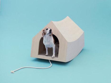 Architetture per cani - Corriere della Sera | 360° design | Scoop.it