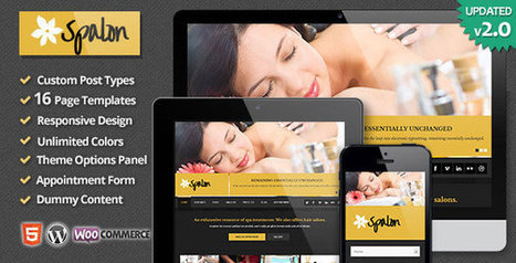 Spalon - Themeforest Responsive WordPress Theme - Daily Nulled | Daily Nulled WordPress Themes & Plugins | Scoop.it