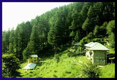 Dalhousie With Dharamshala Tour Package   Tour Package   Scoop.it