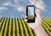 Applications mobiles pour le vin : les incontournables (la suite…) | Blogue SAQ | Vin 2.0 | Scoop.it