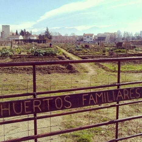 LumePan: Los huertos urbanos llegan a nuestras vidas   Rural Development   Scoop.it