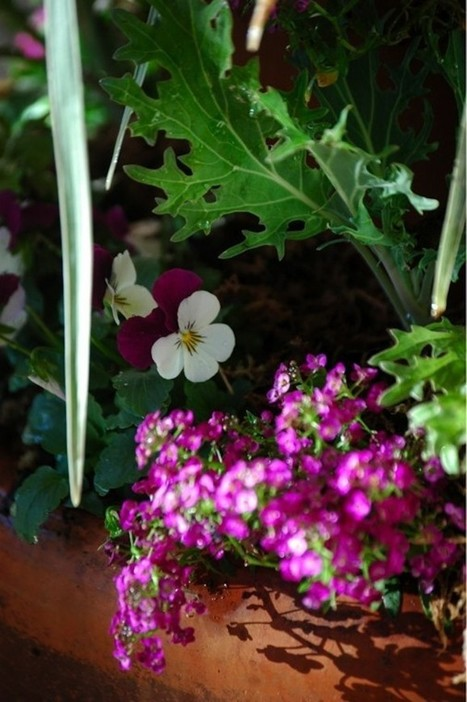 """…and a little flower"" — J Peterson Garden Design | Annie Haven | Haven Brand | Scoop.it"