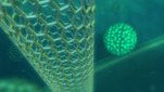 Ray Kurzweil on the Future of Nanotechnology   Conciencia Colectiva   Scoop.it