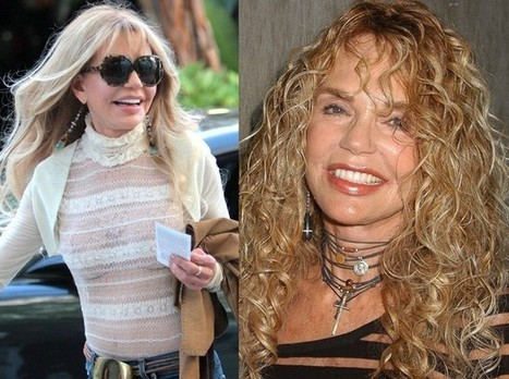Dyan Cannon Plastic Surgery At Her 70 ? Face Lift & Botox Pictures | PlasticSurgeryPics.org - All About Celebrities | Scoop.it