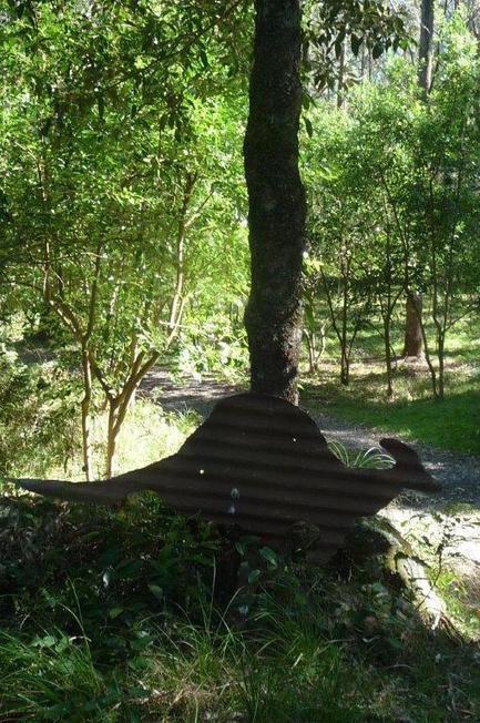 'Bolwarra': a rare rainforest garden retreat in coastal NSW - GardenDrum   Gardening   Scoop.it