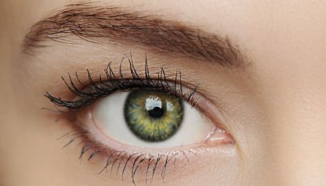 Stem cell treatment may harbor blindness cure.. *** Do You have Enough Stem Cells Circulating In Your Blood for Pro-active Repair to Rejuvenate your Eyes BEFORE the Damage requires Surgery? | Anti-Ageing Means Adult Stem Cells | Scoop.it