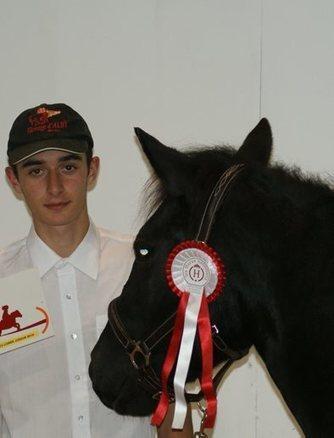Les chevaux de Mérens au salon du cheval | Salon du Cheval | Scoop.it