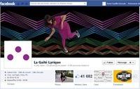 Optimiser l'animation d'une page Facebook avec Shoork | Facebook Pages | Scoop.it