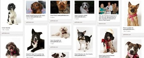 Brands Should Use Pinterest to Create Value for Customers | Pinterest | Scoop.it