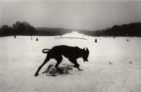"JOSEF KOUDELKA: ""Josef Koudelka - A Monograph"" 