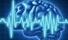 Elettroencefalogramma contro i furti d'auto? | PaginaUno - Società | Scoop.it