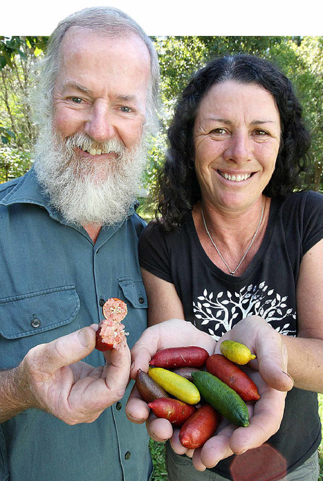 Bushfoods making it big on plate | Australian Plants on the Web | Scoop.it