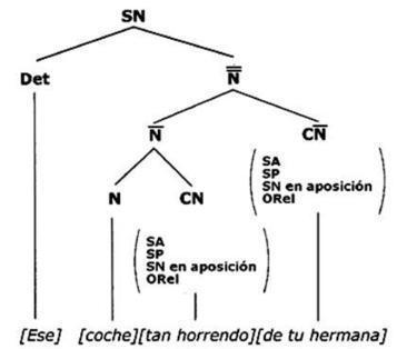 Estructura general de los sintagmas   Spanish galore   Scoop.it