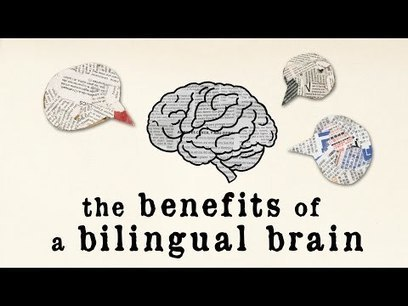 The benefits of a bilingual brain - Mia Nacamulli | If the world were a village - global thoughts for global education | Scoop.it