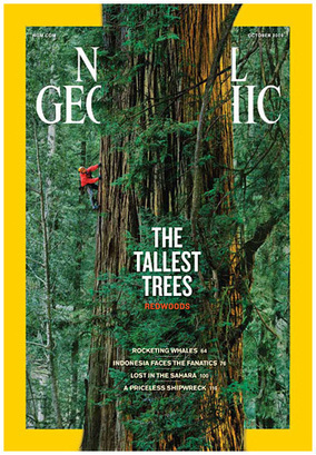What National Geographic's LCA of Paper Means for Magazine Publishers | PACK'[avniR] : ACV, éco-conception et emballage | Scoop.it