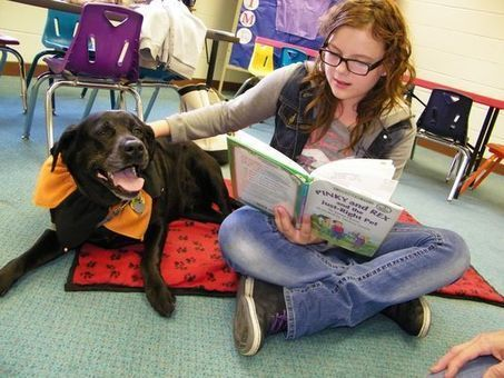 Therapy dogs help give kids reading confidence | Reading discovery | Scoop.it