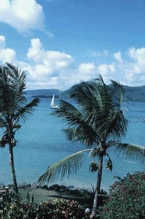 le Régime Tahiti: Papeete ou le rêve tahitien ? | Aloha Monoi Factory | Scoop.it