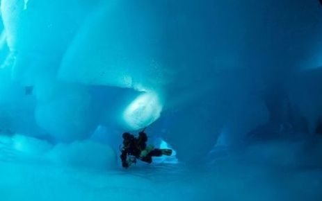Exploit : une expédition française va plonger sous le pôle - Le Parisien   La plongée sous-marine   Scoop.it