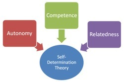 Self-determination theory - Wikipedia, the free encyclopedia | Motivation to Change | Scoop.it