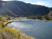 Excessive heat prompts fishing closures in Yellowstone area ... | Fish Habitat | Scoop.it