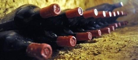 Retour sur les grands crus classés du Médoc 2010 | Le vin quotidien | Scoop.it