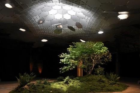 Première : un espace vert souterrain à New York | Nature en Ville | Scoop.it
