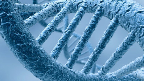 Epigenetics: the ever-changing genetic landscape within us - Health & Wellbeing | personalized medicine | Scoop.it
