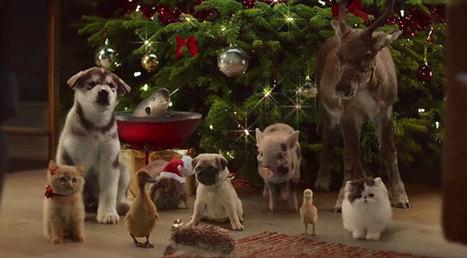 La publicité de Noël trop mignonne pour Mc Vitie's   Publicité - Advertising   Scoop.it