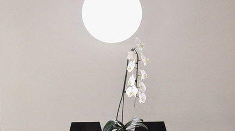 Sunn, une lampe connectée qui imite le soleil -... | objets-connectes | Scoop.it